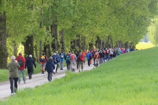 EröffnungsWallfahrt zu den Sonntagberg-Jubiläen