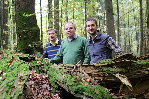 Besuch Wildnisgebiet Dürrenstein