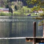 Internationale Zusammenarbeit: Seit über 100 Jahren wird am Lunzer See die Welt des Wassers erforscht.