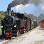 """Seit 1889 in Betrieb: Der """"Steyrer Schnaufer"""" verkehrt bis heute zwischen Steyr und Grünburg."""