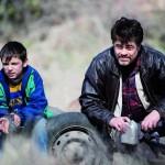 """""""A Perfect Day"""": Verein Filmzuckerl zeigt spanisches Kino nach Waidhofen."""