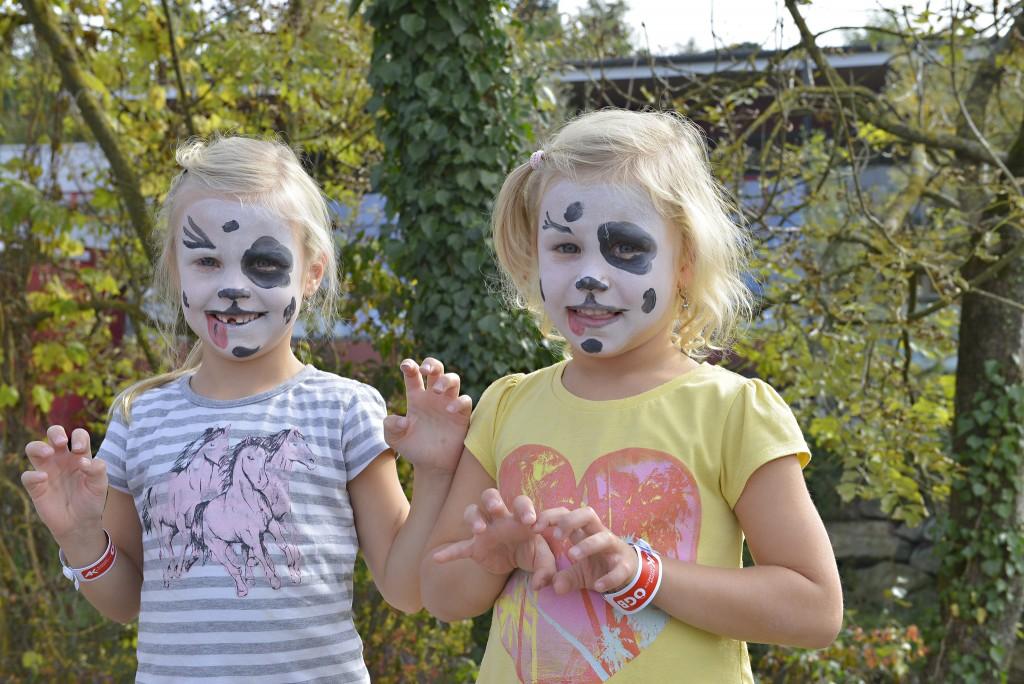 Jede Menge Spaß und Action gab es beim Familienfest in Wieselburg. Die Jungen erwartete ein vielfältiges Spielangebot am Messegelände. Foto: Alexandra Kromus