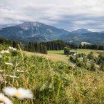 Gemeinsam in die Zukunft des Naturparks Ötscher-Tormäuer